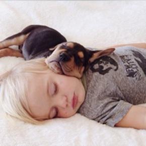 Le guide du sommeil de b b avec babyfrance - Mon bebe ne veut pas dormir dans son lit ...