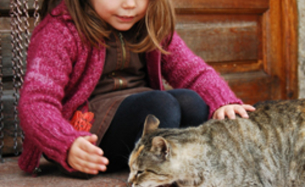 Toxoplasmose : les bons conseils