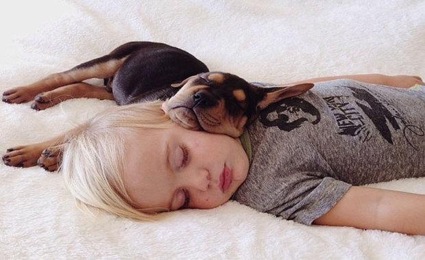 quel animal de compagnie pour votre enfant. Black Bedroom Furniture Sets. Home Design Ideas